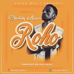 Download Audio | Cheddy Mario - Roho