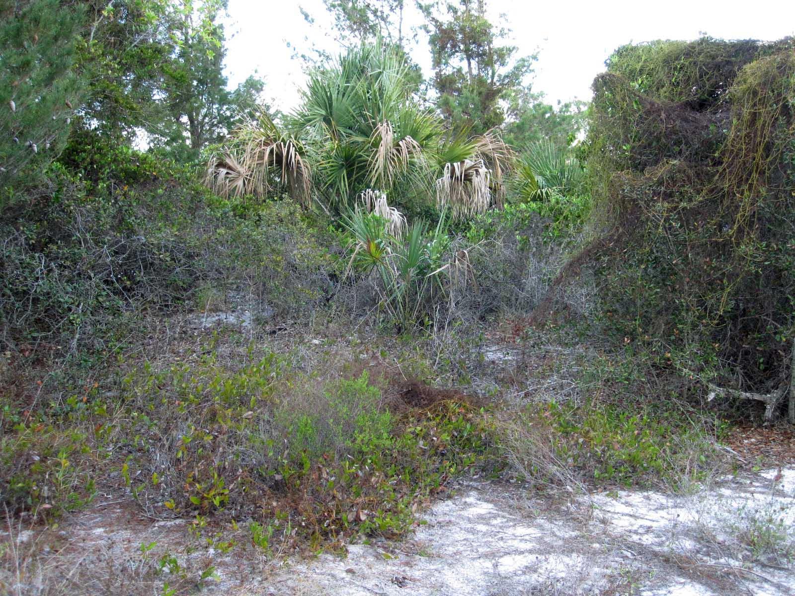 Greenbrier Pompano Beach Florida