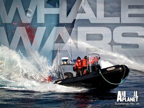Whale Wars (Season 4)