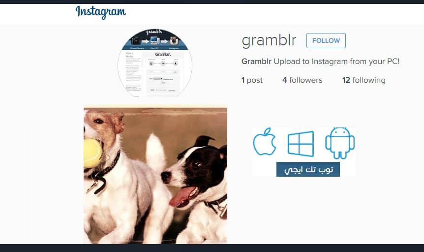 تحميل برنامج gramblr لرفع الصور من الكمبيوتر الى الانستقرام - توب تك