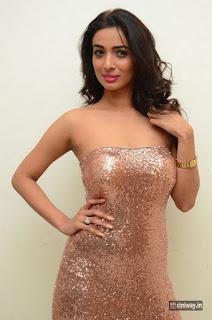 Heena Panchal Photos at Thikka Audio Launch