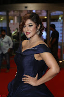Payal Ghosh aka Harika in Dark Blue Deep Neck Sleeveless Gown at 64th Jio Filmfare Awards South 2017 ~  Exclusive 153.JPG