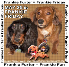 Kudos to Furpal Frankie, our Pawsome Mayor of Blogville!