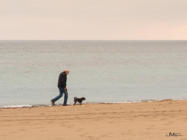 Anciano con su perro paseando por la orilla del mar al amanecer
