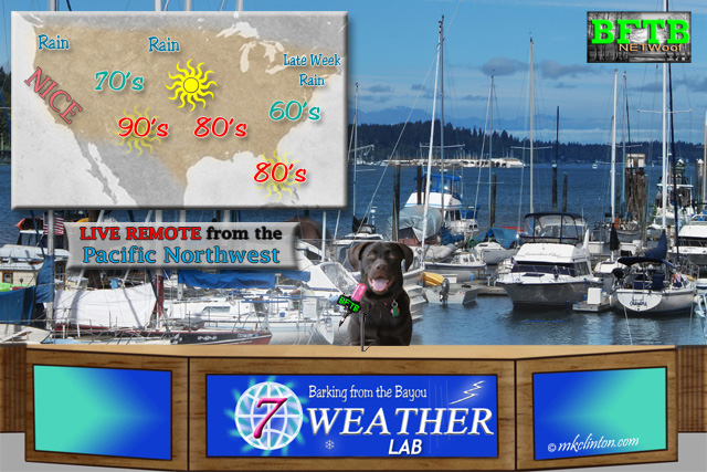 BFTB NETWoof Weather with Paisley the Weather Lab.