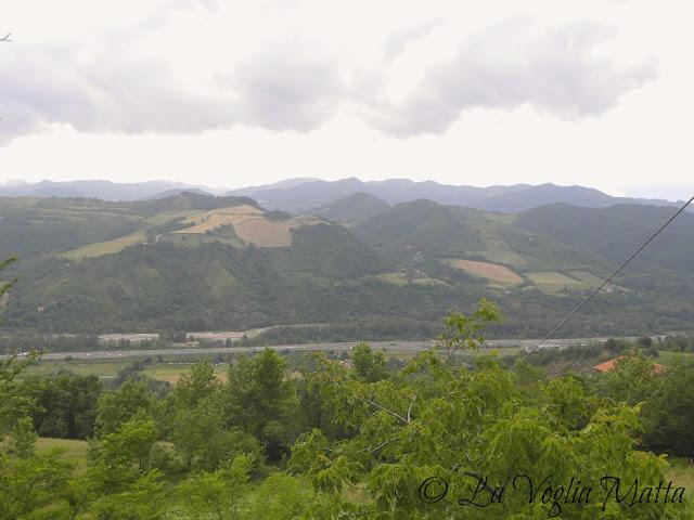colline bolognesi sullo sfondo l'autostrada