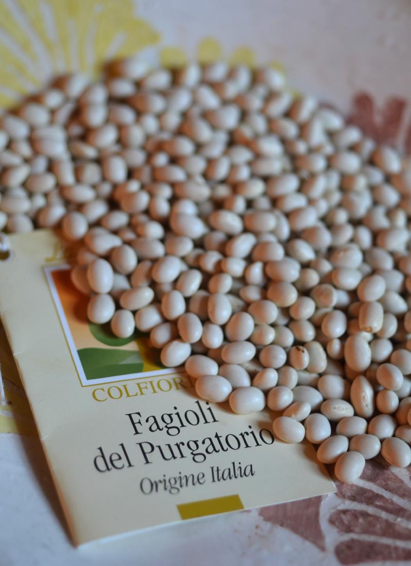 Purgatory Beans