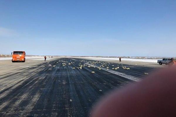 9 тона злато, платина и диаманти паднаха от самолет в Русия