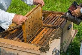 Εξίσωση Μελισσιών. Ένας στρατηγικός χειρισμός!