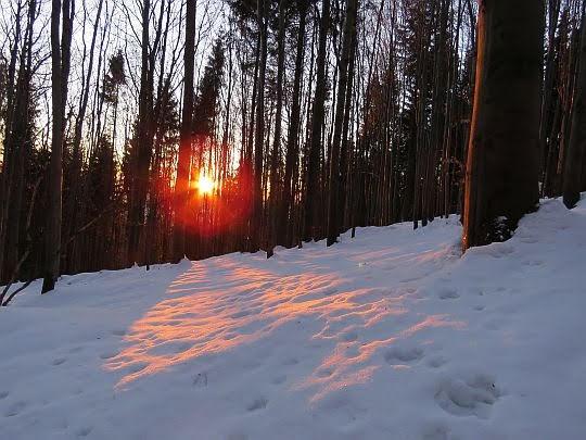 Wschód słońca.