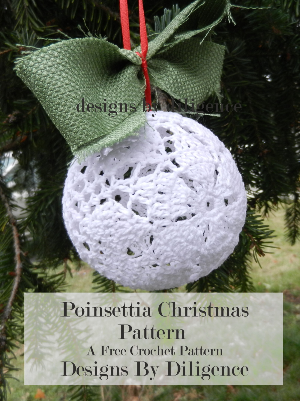 Designs By Diligence Poinsettia Christmas Pattern