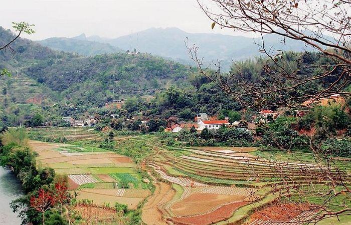 Image result for bảo lạc