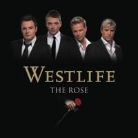 Cảm âm Rose - westlife