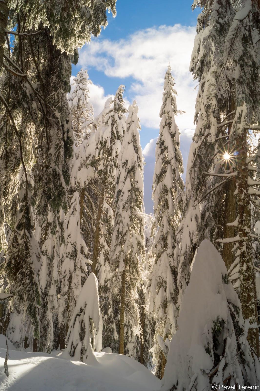Вот так в Ванкувере можно легко выбраться в зиму.