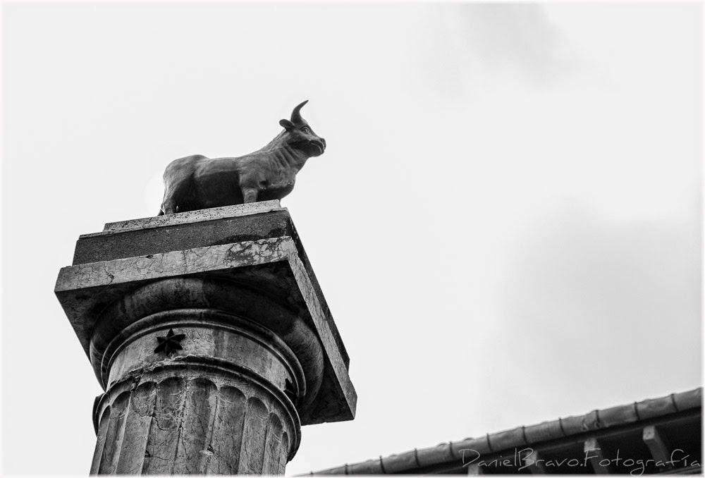 Teruel, torico, toro