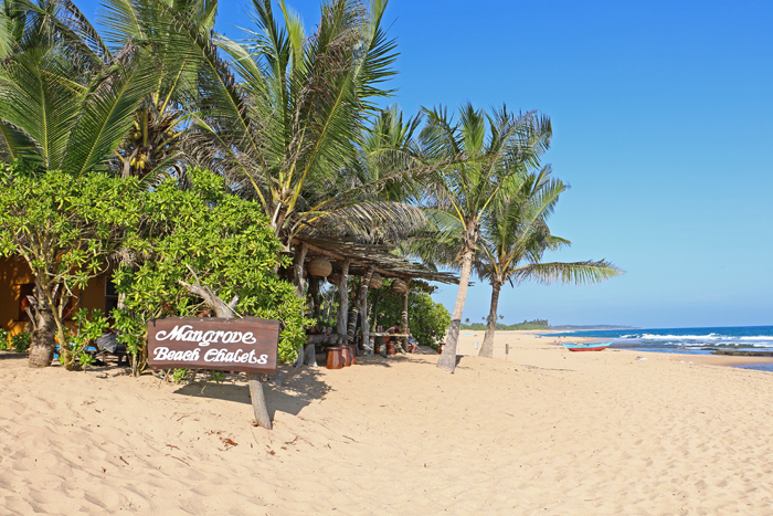 Mangrove Beach Resort