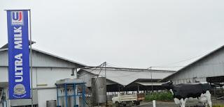 Lowongan Kerja Terbaru di Bandung PT Ultrajaya Milk Industry and Trading Company Tbk