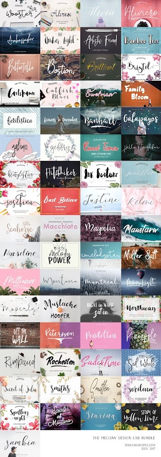 Fitness And Chicness-The Hungry JPEG-Mellow Design Lab Bundle