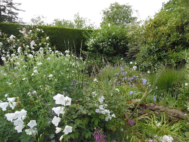 White Garden, angielska rabata