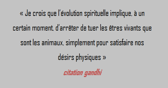 Citation D Amour Citation Gandhi Animaux
