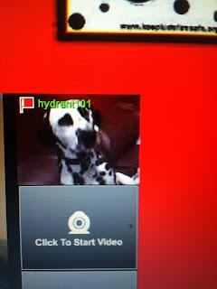 Have hit stickam dog improbable