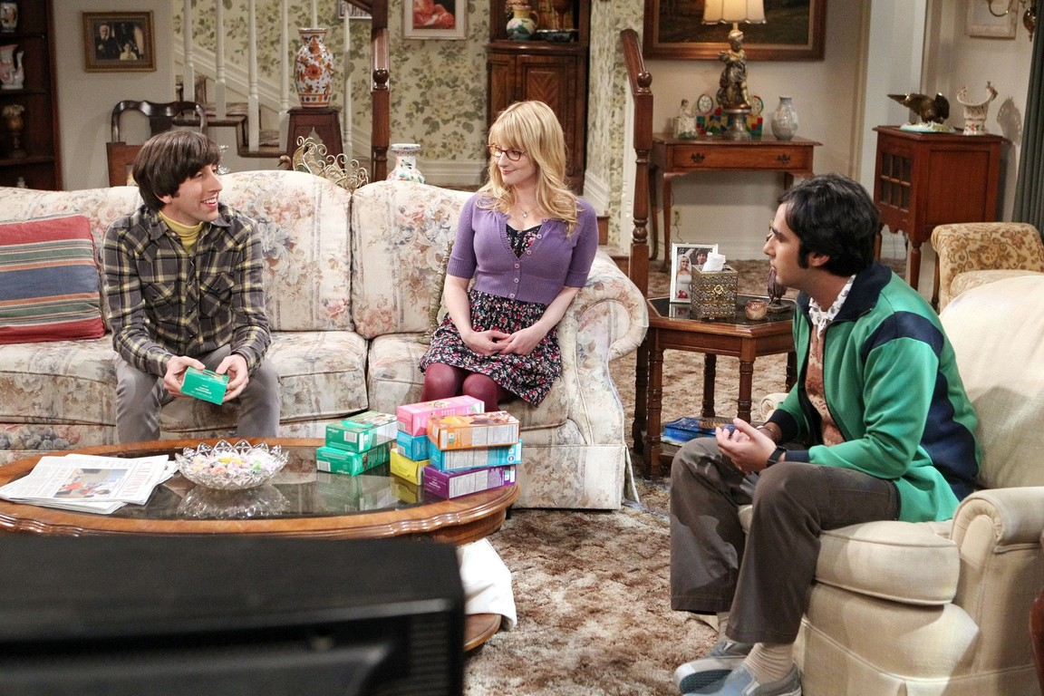 The Big Bang Theory - Season 8 Episode 20: The Fortification Implementation
