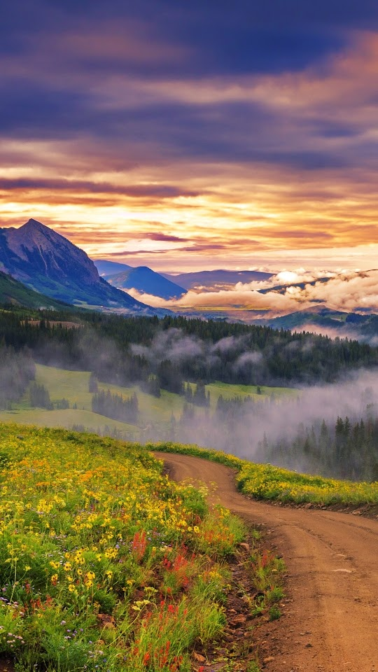 Mountains Forest Valley Dawn Fog Galaxy Note HD Wallpaper