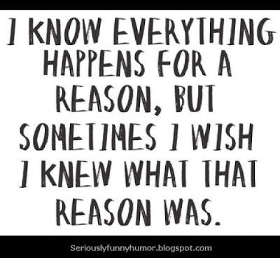 I know everything happens for a reason, but sometimes I wish I knew what that reason was! #Funny