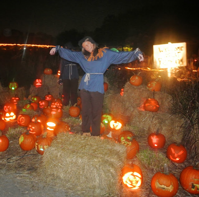 scarecrow, pumpkins, fall