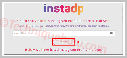 download instagram profile pic full size