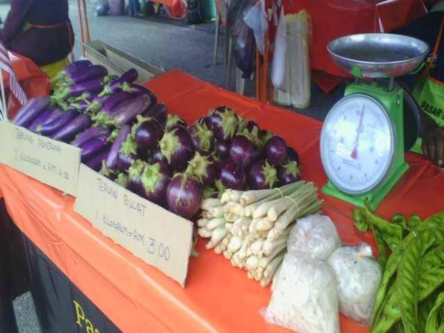 Berbagai Jenis Sayur