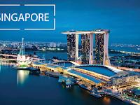 Liburan ke Singapura? Kunjungi 3 Surga Pecinta Kucing Berikut!