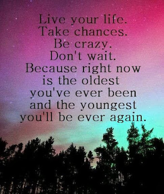 quotes about live you life:  Live your life. Take chances.