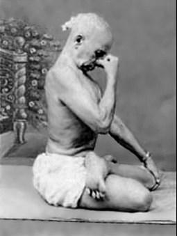 ashtanga vinyasa krama yogaat home  pranayama