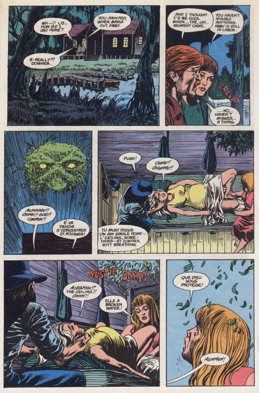 Swamp Thing (1982) Issue #90 #98 - English 15