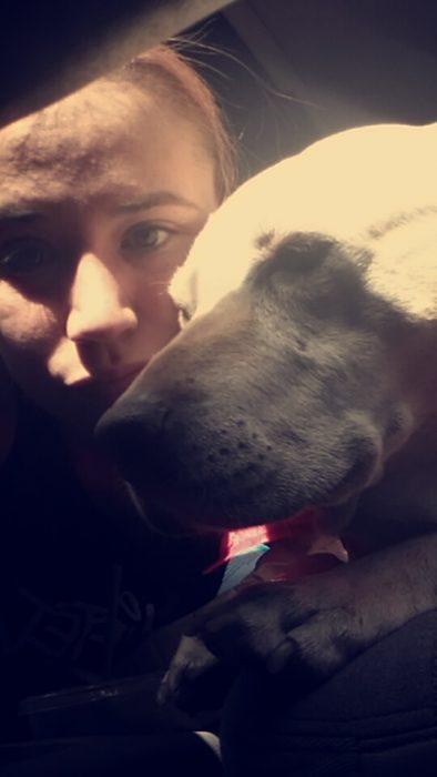 Le dio a su perrita el mejor último día de su vida