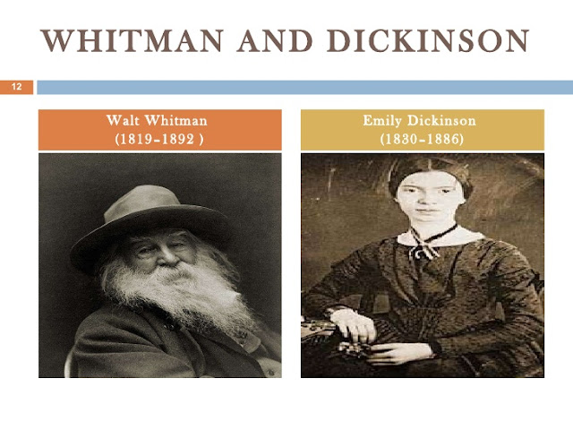 a comparison of the walt whitmans and emily dickinsons poetry Differences between walt whitman and emily walt whitman and emily dickinson both had and gender are reflected in their poetry emily dickinson focused a lot.