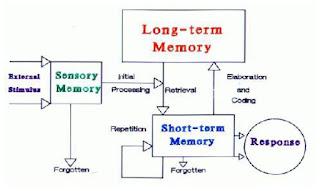Bedah Materi Modul Teori Belajar dan Prinsip Pembelajaran