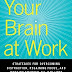 Your Brain at Work. David Rock