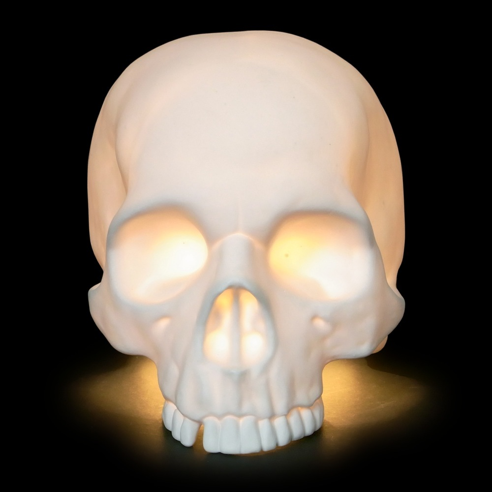 If its hip its here archives hand cast bone china skull the table lamp currently has 3 metres of cable to uk 3 pin plug bulb not included alex can supply cable and american or european edison lamp aloadofball Image collections