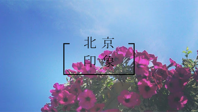 【北京】夏日北京印象(故宮、頤和園、頤和安縵、北平小院、慕田峪長城、南鑼鼓巷、恭王府)