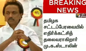 Stalin elected as opposition leader in DMK MLAs meeting