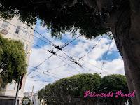 舊金山市區