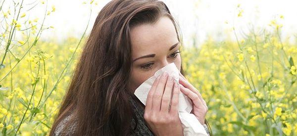 Allergie aux pollens : symptômes, traitements