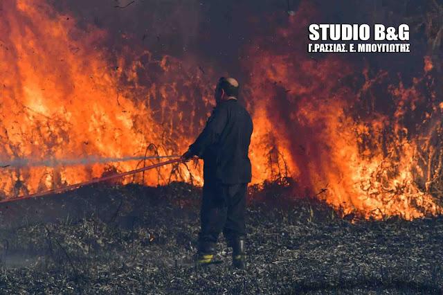 Πολύ υψηλός κίνδυνος για εκδηλωση πυρκαγιάς στην Αργολίδα - Έκτακτα μέτρα