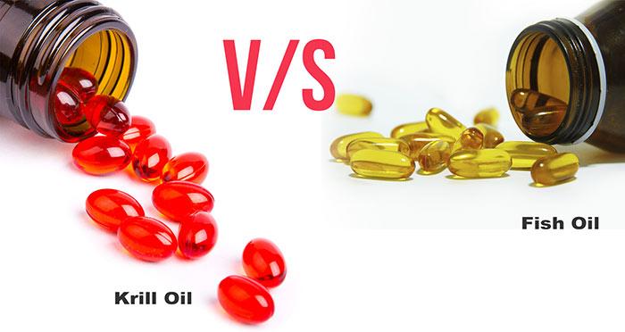 Minyak Ikan Vs Minyak Krill, Mana yang Lebih Bagus?