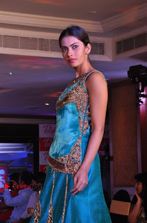 South Indian Celebrities Pos at Love For Handloom Collection Fashion Show  0095.jpg