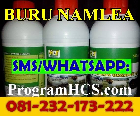 Jual SOC HCS Buru Namlea
