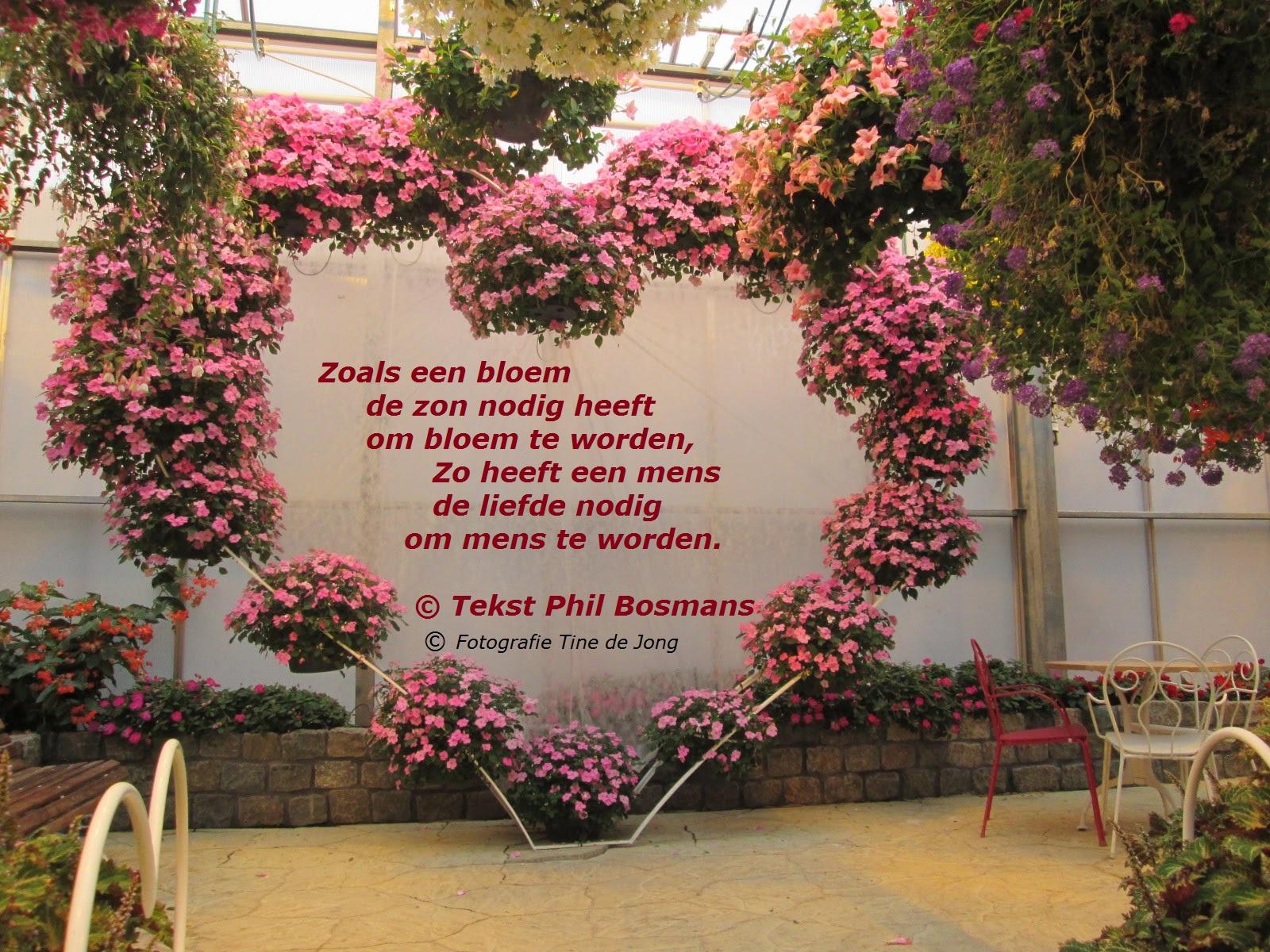Uitzonderlijk Hart vol bloemen voor jou. | De Mens en de Natuur #MU-95