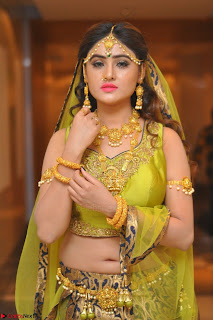 Sony Charishta in Green Choli Ghagra Transparent Chunni Ethnic Wear March 2017 074.JPG